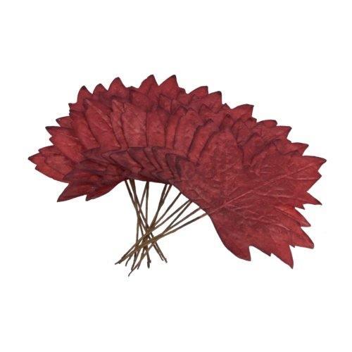 The Holiday Aisle Maple Leaf (Set of 4) (Set of 12)