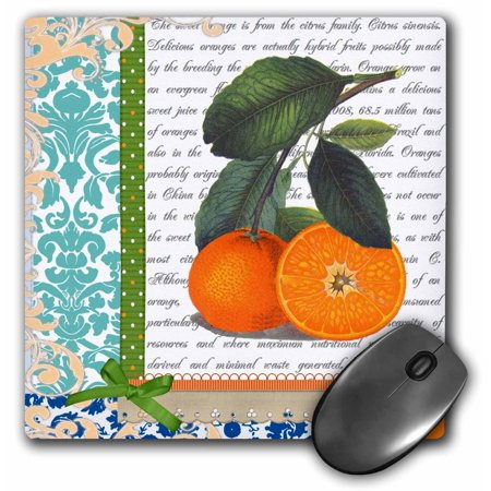 3Drose Vintage Florida Oranges Fruit   Stylish Elegant Arty Kitchen   Blue Damask   Green Ribbon Graphic  Mouse Pad  8 By 8 Inches