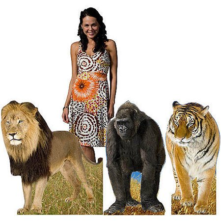 Jungle Animal Cardboard Stand-Ups, Set of 3](Cardboard Animals)