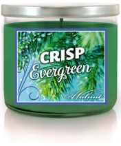 719 Walnut Avenue Candle, Crisp Evergreen, 14 oz