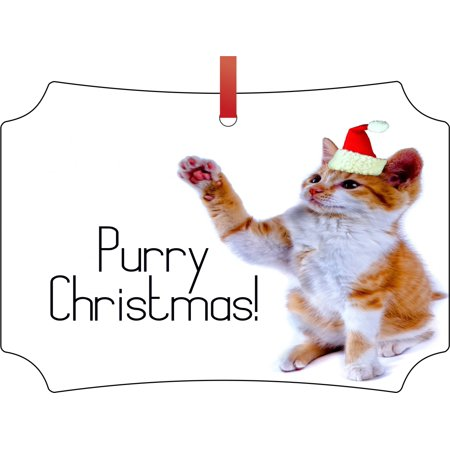 Ornaments with Cats Purry Christmas Kitten in a Santa Claus Hat Double Sided Elegant Aluminum Glossy Christmas Ornament Tree Decoration - Unique Modern Novelty Tree Décor Favors - Cat With Santa Hat