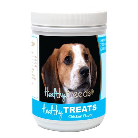 American English Coonhound Healthy Soft Chewy Dog Treats American English Coonhound Dog