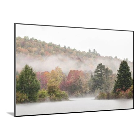 USA, New Hampshire, White Mountains, Fog drifting around Coffin Pond Wood Mounted Print Wall Art By Ann Collins](Wood Coffin)