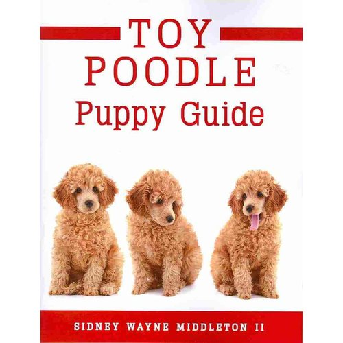 Toy Poodle Puppy Guide