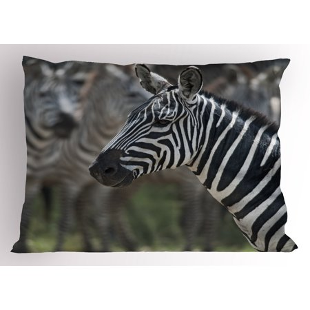 African Pillow Sham Zebra in Serengati National Park Safari Animal in Desert Picture, Decorative Standard King Size Printed Pillowcase, 36 X 20 Inches, Black White Reseda Green, by Ambesonne](Reseda Park Halloween)