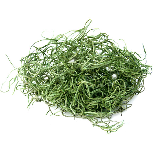 Super Moss 26922 32 Oz Spanish Moss Preserved