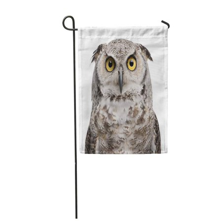 POGLIP Brown Great Horned Owl Bubo Virginianus Subarcticus in Front Garden Flag Decorative Flag House Banner 12x18 inch - image 1 de 1