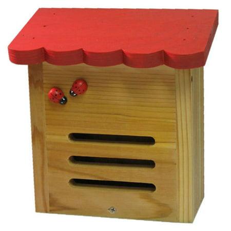 RED Roof Ladybug House: Hand-Painted Ladybug Nesting Box, Weather Resistant