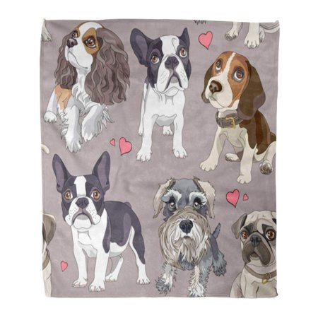 SIDONKU Throw Blanket Warm Cozy Print Flannel Dog Different Cartoon Puppies Pattern Schnauzer Comfortable Soft for Bed Sofa and Couch 50x60 (Best Sofa Throws For Dogs)