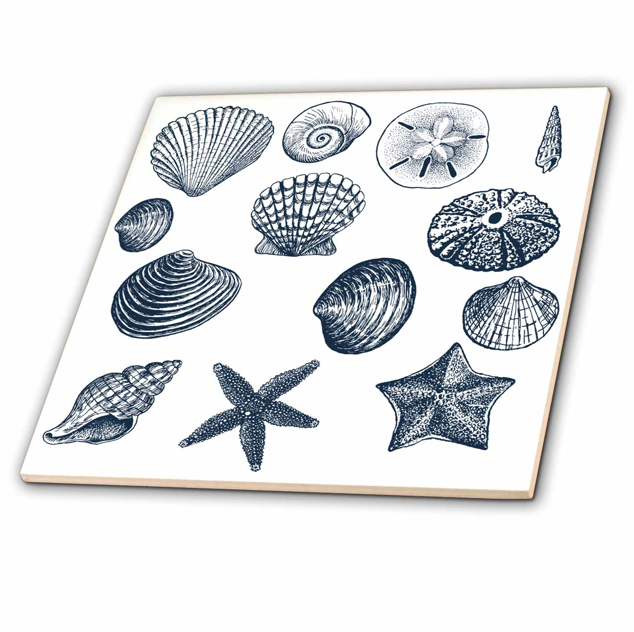 3dRose Blue Sea Shells Nautical beach theme ocean art - Ceramic Tile, 4-inch