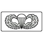 Airborne Wings Photo License Plate