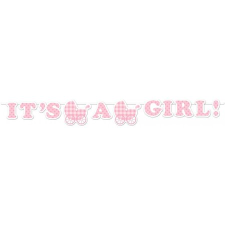 Creative Converting It'S A Girl Gingham Banner](Gingham Decorations)
