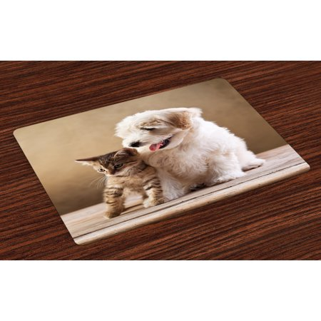 Animal Placemats Set of 4 Cute Baby Cat Kitten and Puppy Dog Best Friends Image Photo Artwork, Washable Fabric Place Mats for Dining Room Kitchen Table Decor,Sand Brown Cream and White, by (Best Place To Apply Bioidentical Hormone Cream)