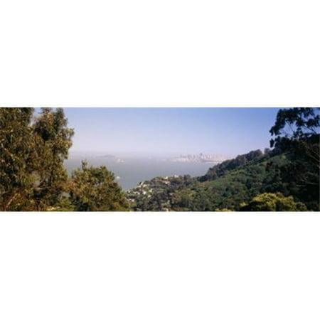 Trees on a hill  Sausalito  San Francisco Bay  Marin County  California  USA Poster Print by  - 36 x 12 - image 1 of 1