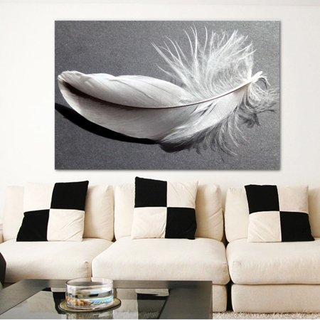 Meigar Framed 29.5''x19.7'' Gray and White Feather Canvas Abstract Nature Landscape Wall Art Picture Living Room Dining Room Home Decor](Feather Wall Art)