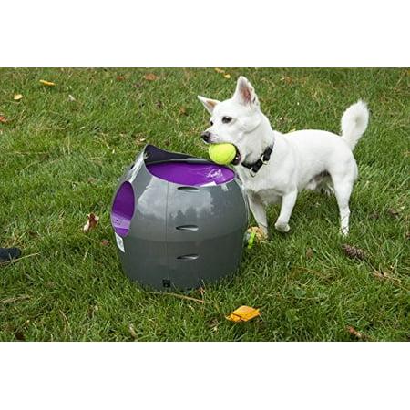 PetSafe Automatic Ball Launcher Dog -