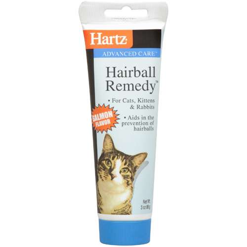 fluconazole for cats