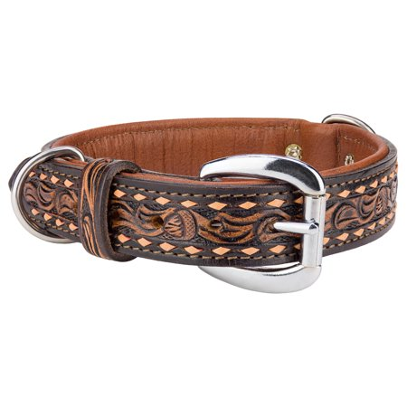 Angel Tucson Leather Dog Collar](Angel Dog)