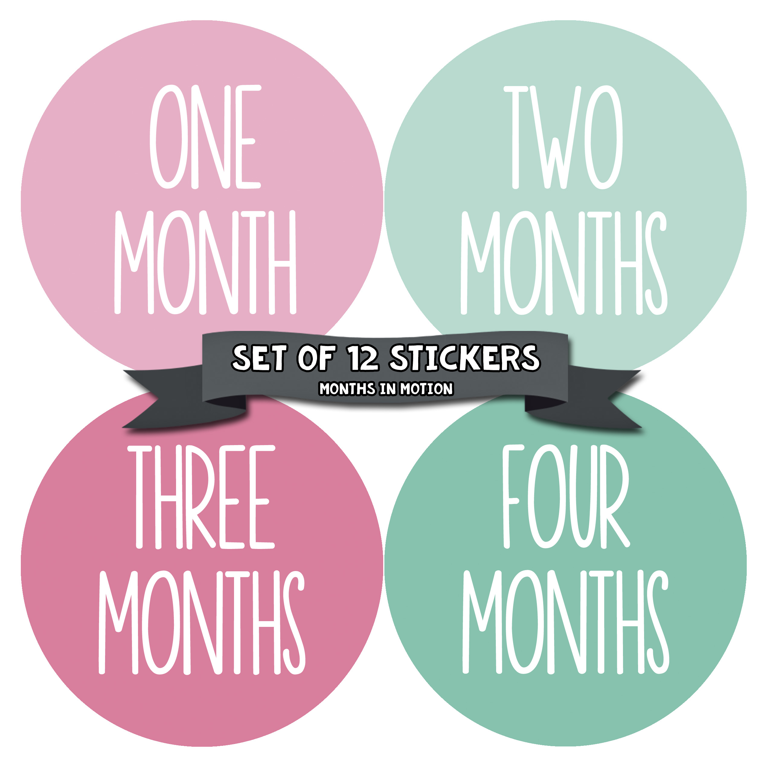 Baby Month Stickers by Months In Motion | 12 Monthly Milestone Stickers for Baby Girls (1041)