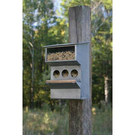 Wall Mounted Seed Dispenser Backyard Bird Feeder