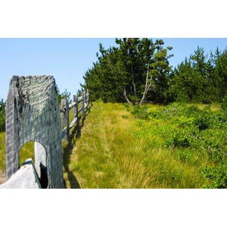 Ibm Photo - Nantucket Island Weathered Wood Fence Photo Poster Poster Wall Art