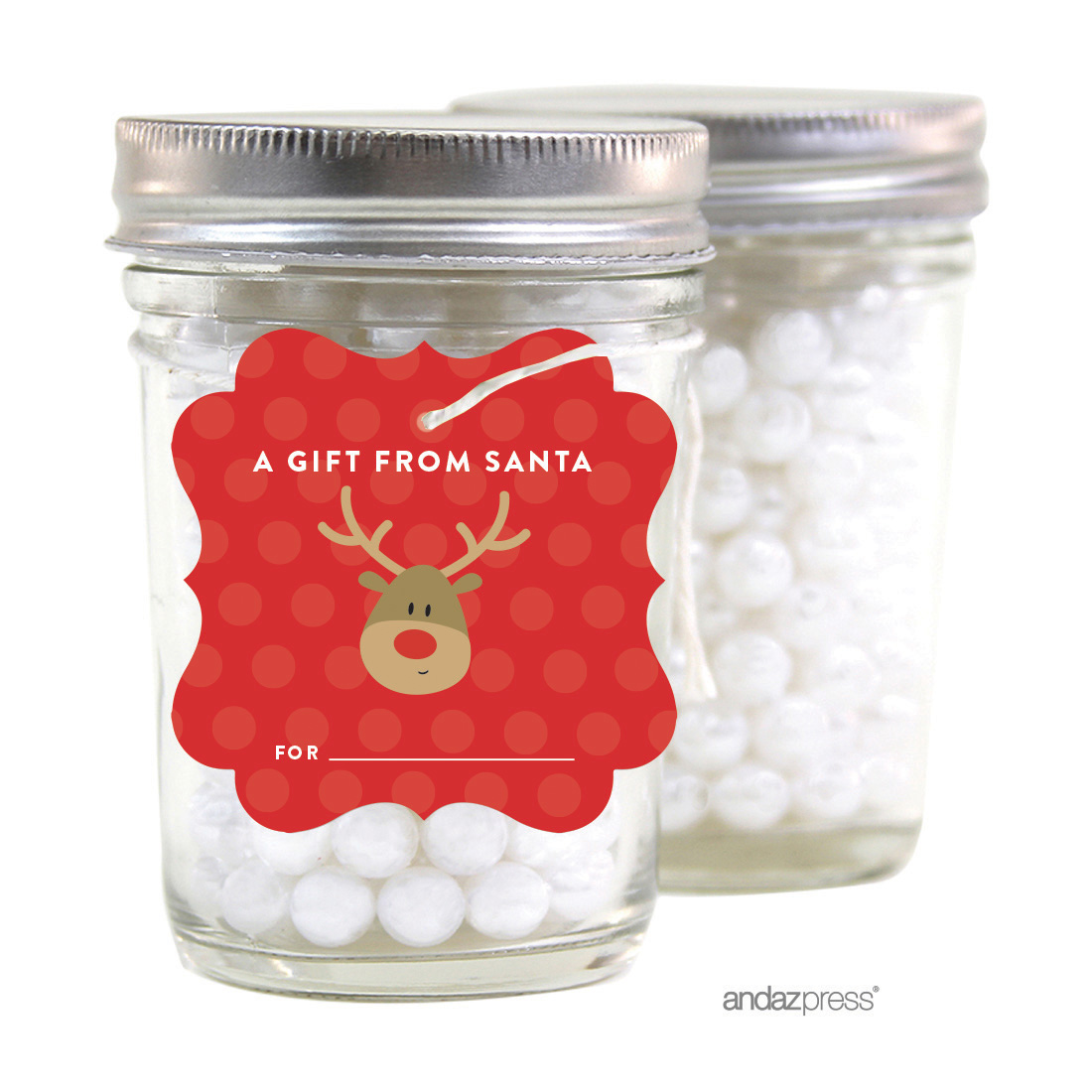 A Gift From Santa Red Christmas Fancy Frame Gift Tags, 24-Pack