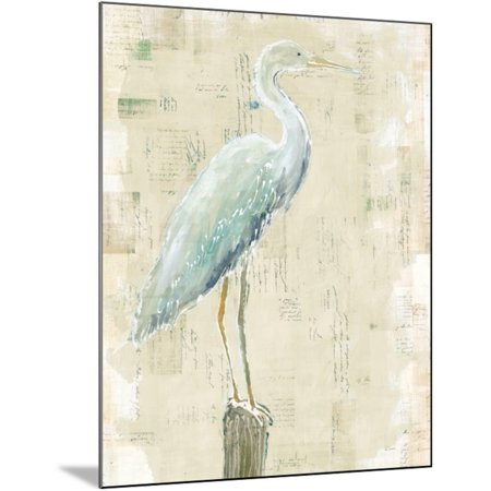 Coastal Egret I v2 no Aqua Wood Mounted Print Wall Art By Sue -