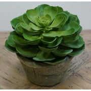 """6.75"""" Green and Brown Potted Artificial Echeveria Succulent Plant"""