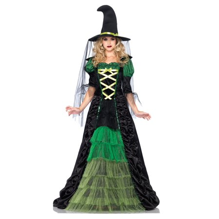 Adult Storybook Witch Costume - Dark And Stormy Halloween Costume