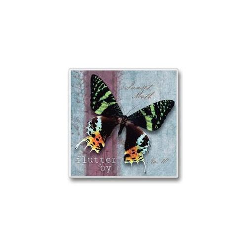 Flutter By Coasters Black Multi-Colored Butterfly Set of 6