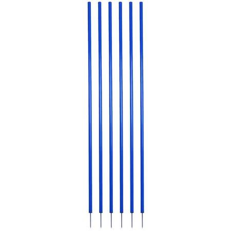 Blue Coaching Stick Set ()