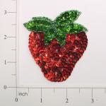 Expo Int'l Strawberry Sequin Applique