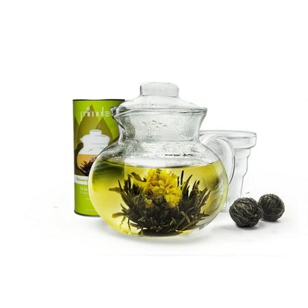 Primula Flowering Tea Gift Set, Includes 40 oz. Teapot, Loose Leaf Tea Infuser, Lid, and Canister of 12 Green Tea Flowers