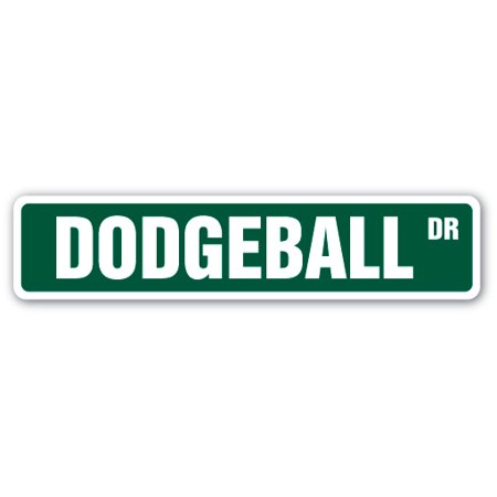 Dodgeball Street Sign Dodge Ball Team Coach Player Gift Net Goal