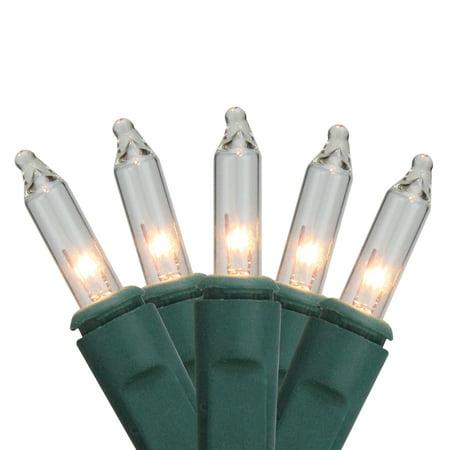 2' x 8' Clear Twinkling Mini Christmas Net Style Tree Trunk Wrap Lights - Green Wire](Halloween Twinkle Lights)