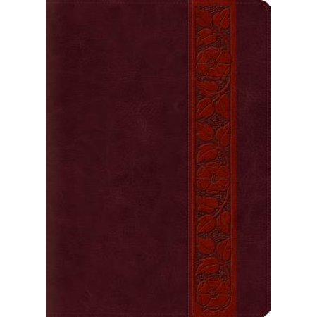Study Bible-ESV-Large Print Trellis Design