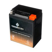 Ytx14Ahl-Bs High Performance - Maintenance Free - Sealed Agm Motorcycle Battery