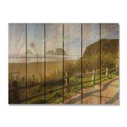 Day Dream HQ CS3324 33 x 24 in. Coastal Stroll Inside & Outside Cedar Wall Art