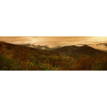 Trees in autumn Black Rock Mountain State Park Georgia USA Canvas Art - Panoramic Images (6 x