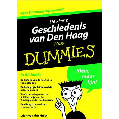 De kleine geschiedenis van Den Haag voor Dummies - eBook - Halloween Den Haag