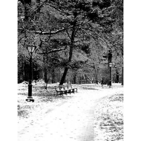 - Central Park Snowy Scene 2 Poster Print by Jace Grey