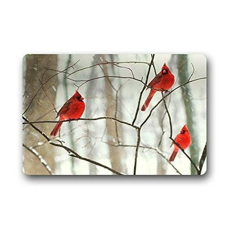 Arizona Cardinals Rug - WinHome Northern Cardinal Bird Doormat Floor Mats Rugs Outdoors/Indoor Doormat Size 23.6x15.7 inches