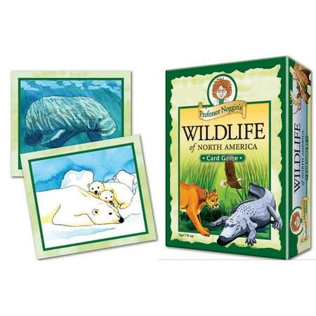 Outset® Media Professor Noggins Wildlife of North America Game (Professor Noggin)