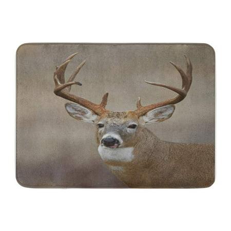 SIDONKU Trophy Whitetail Buck Deer Midwestern Hunting Illinois Ohio Wisconsin Minnesota Doormat Floor Rug Bath Mat 30x18