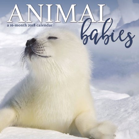 Animal Babies 2018 Mini Wall Calendar