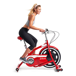 Schwinn Classic Cruiser Exercise Bike
