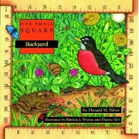 One Small Square: Backyard (Paperback)