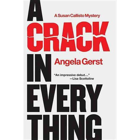 A Crack in Everything: A Susan Callisto Mystery by
