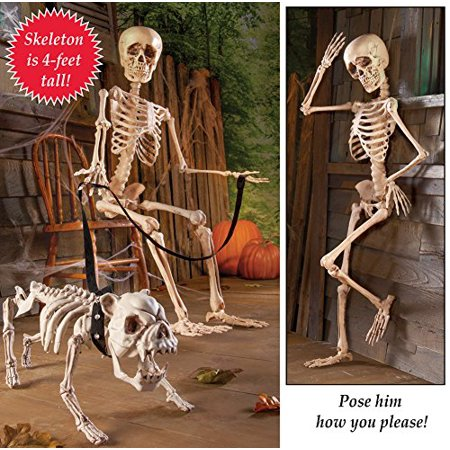 Posable Skeleton Halloween Decor (Halloween Skeleton Head Clipart)