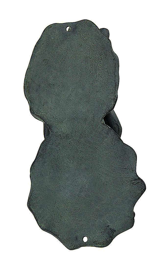 Nose to Petal Frog /&Flower Verdigris Finish Cast Aluminum Door Knock